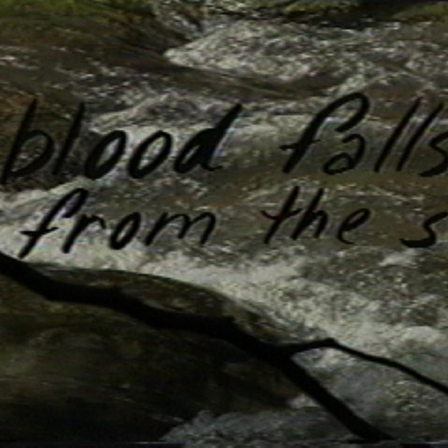 Survival of the Delirious - Text on Image:  Blood falls from the Sky