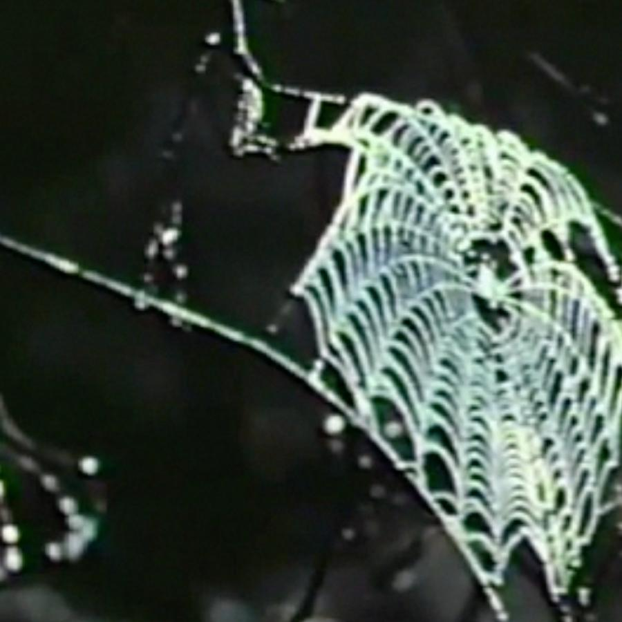 Spider web. Glooscap Country. Directed by Margaret Perry, 1961. Nova Scotia Information Services Nova Scotia Archives film no. Fc 48